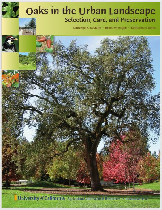 Oaks in the Urban Landscape book cover